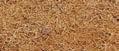 Kokosová vrstva